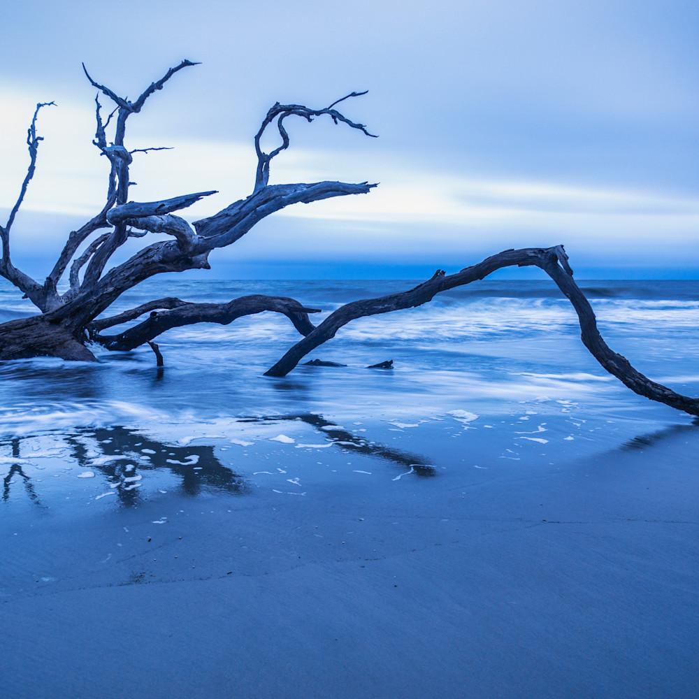 Sunrise driftwood reflections chtyyh