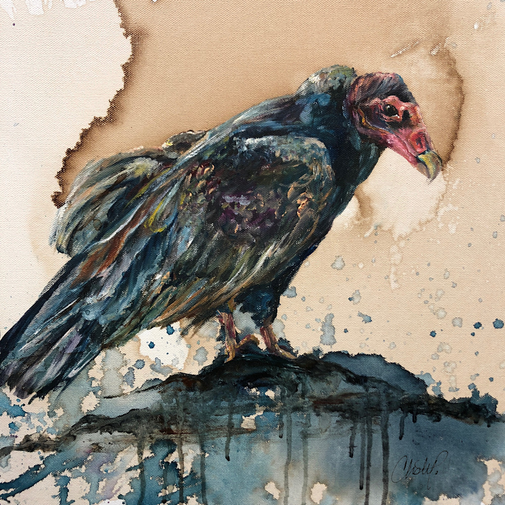 Vulture zwbxx4