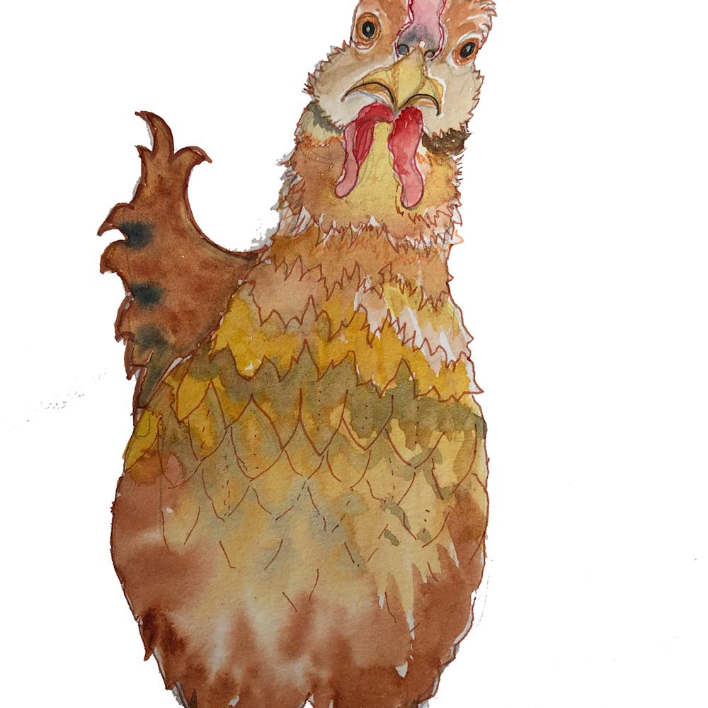 Chicken ecru ivaisv