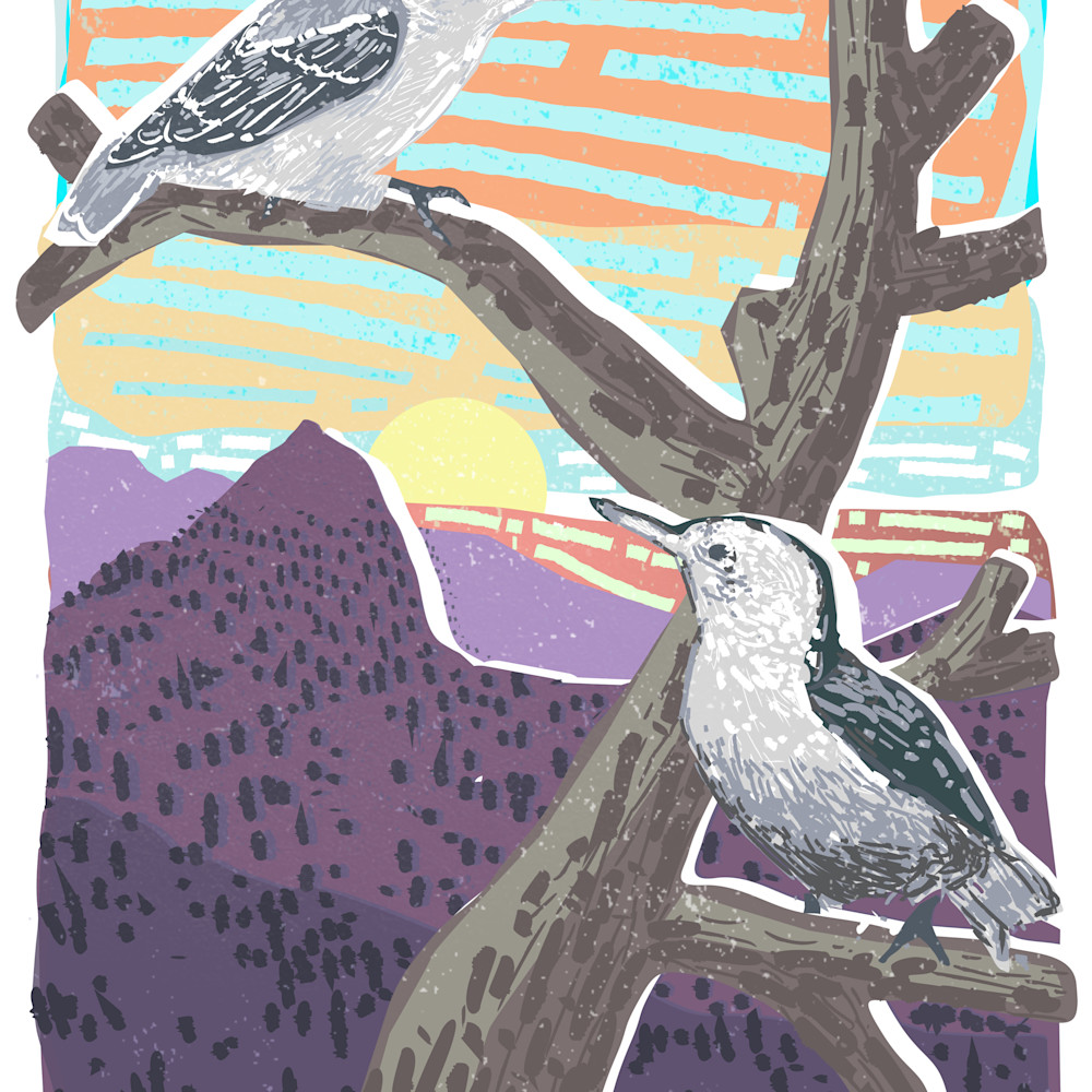 Nuthatches by andrew daniel xih2ke