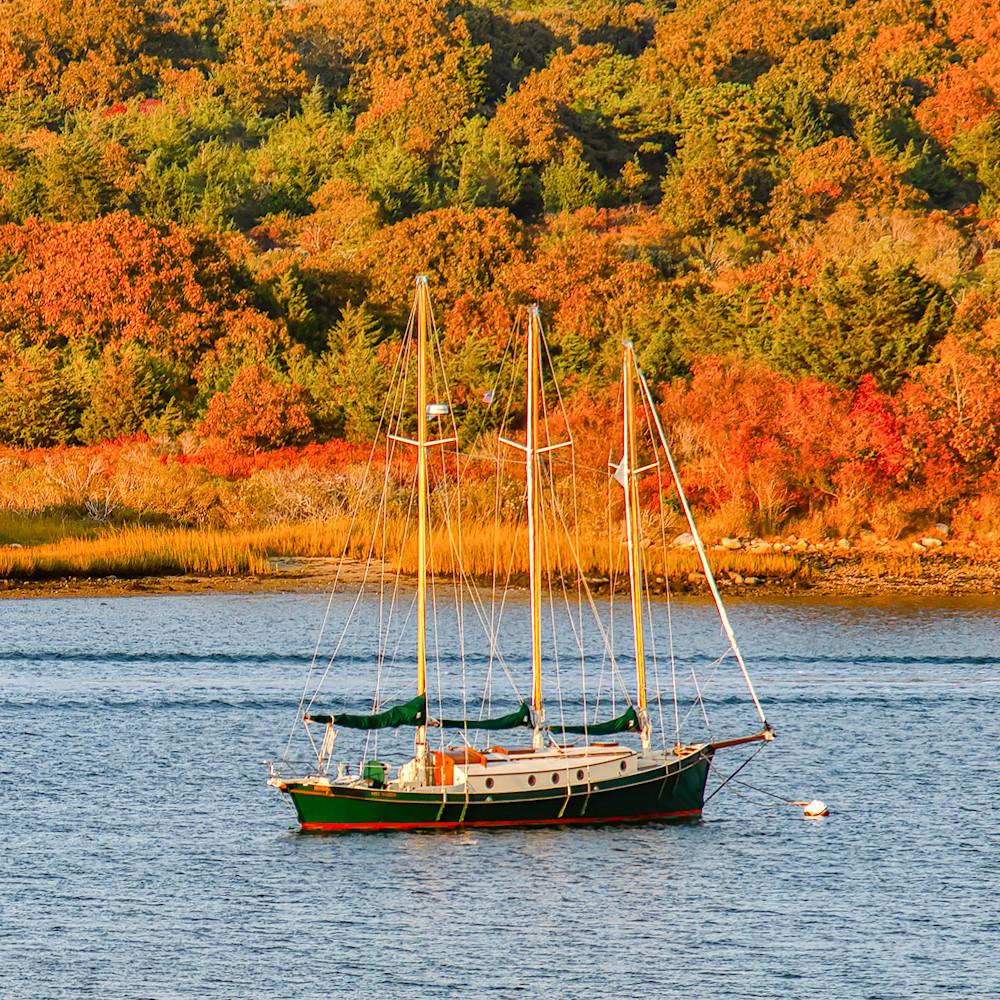 Quitsa pond sailboat fall syibz4