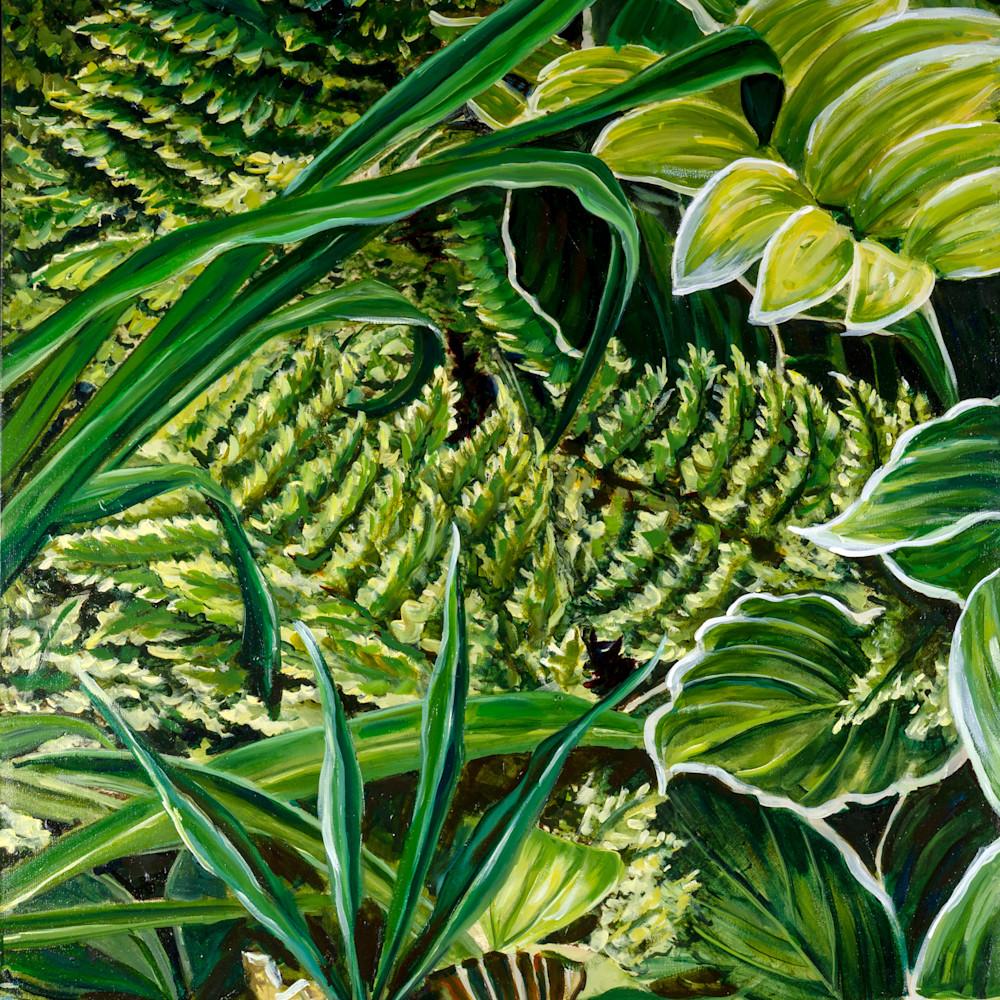 Rainforest 1 pgvjyd