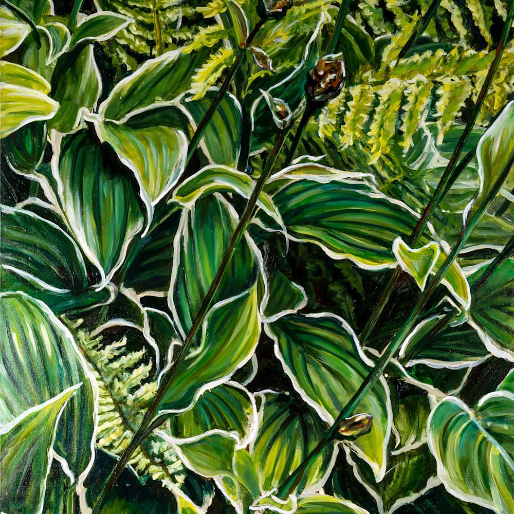 Rainforest 2 wn4qiq