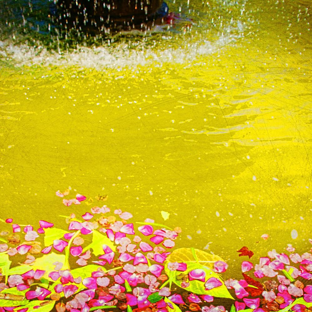200 petals watermarked 300 dpi wlkkag