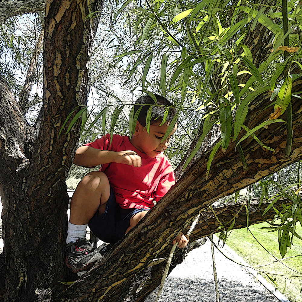 Beau climbing tree with rope 6 at 300 dpi afs vnnnge