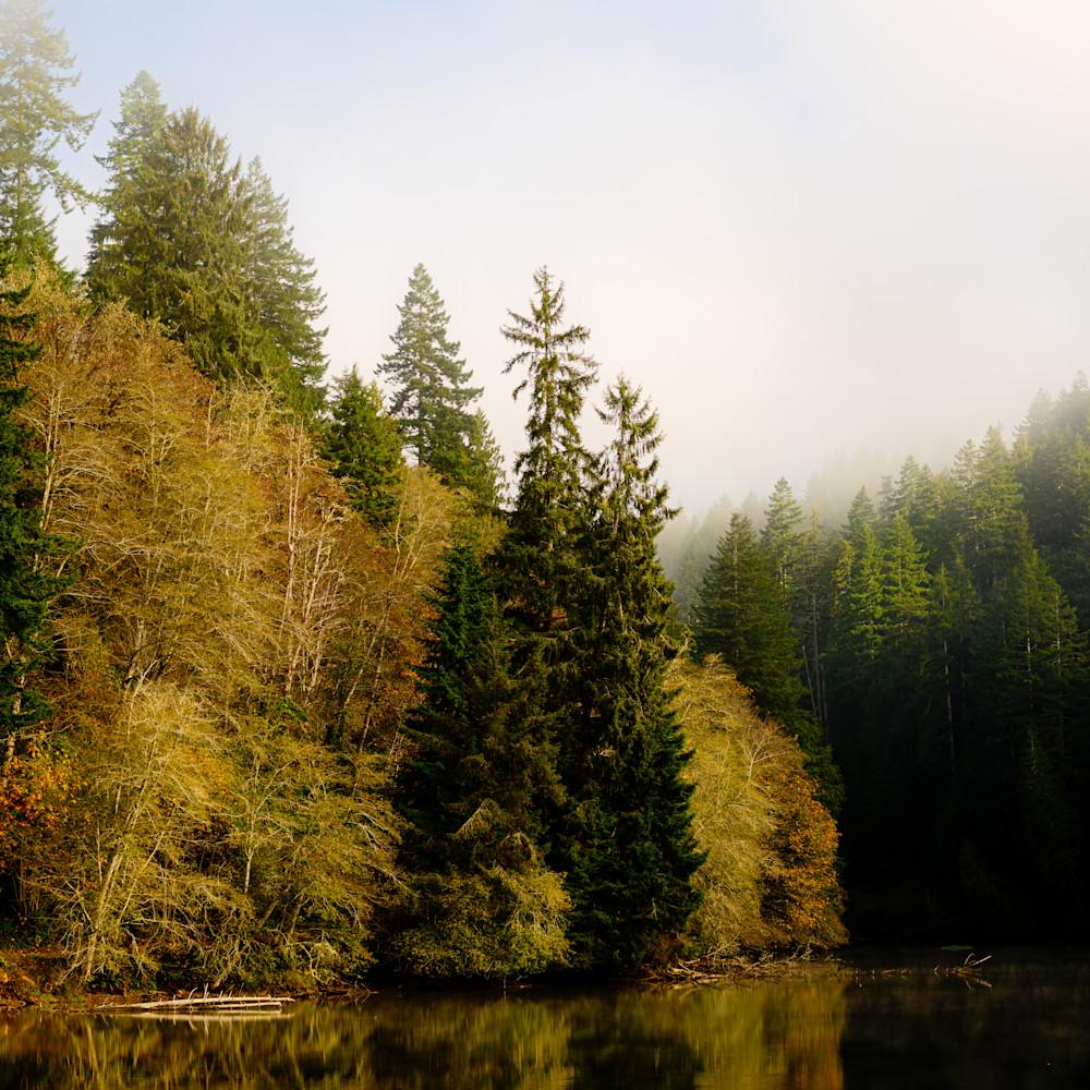 Foggy autumn morning lake sylvia washington 2020 vopkfz