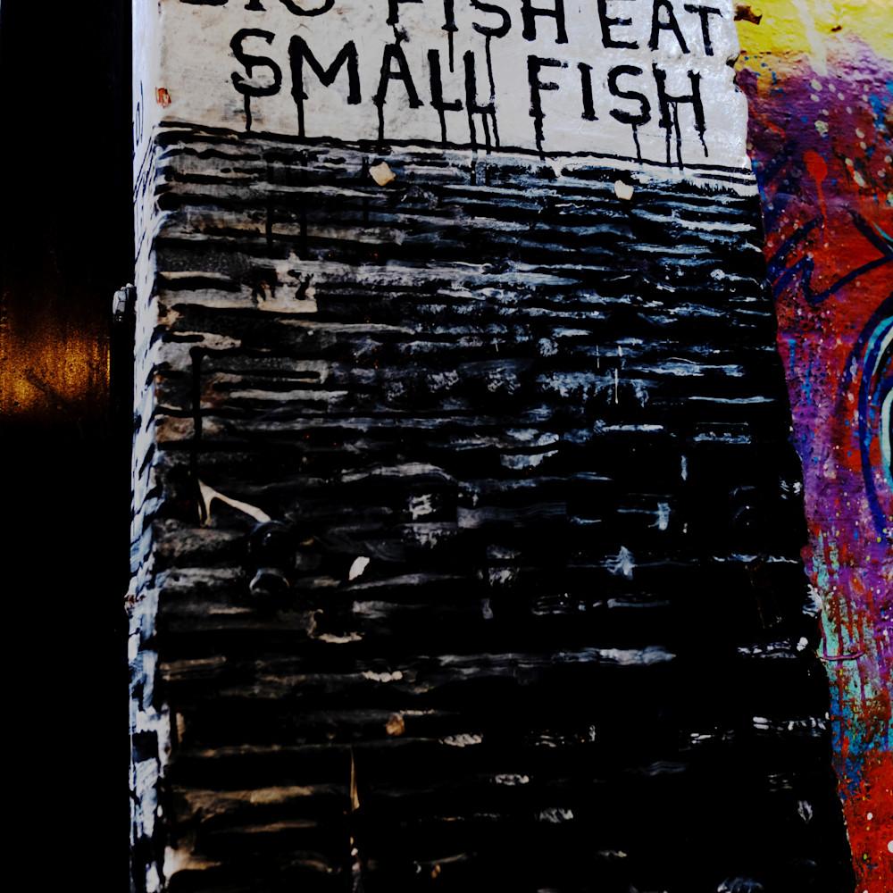Big fish small fish xlbqy9