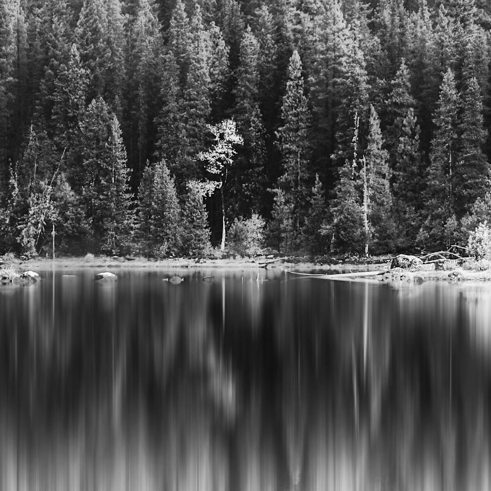 Bnw reflection a83k8f