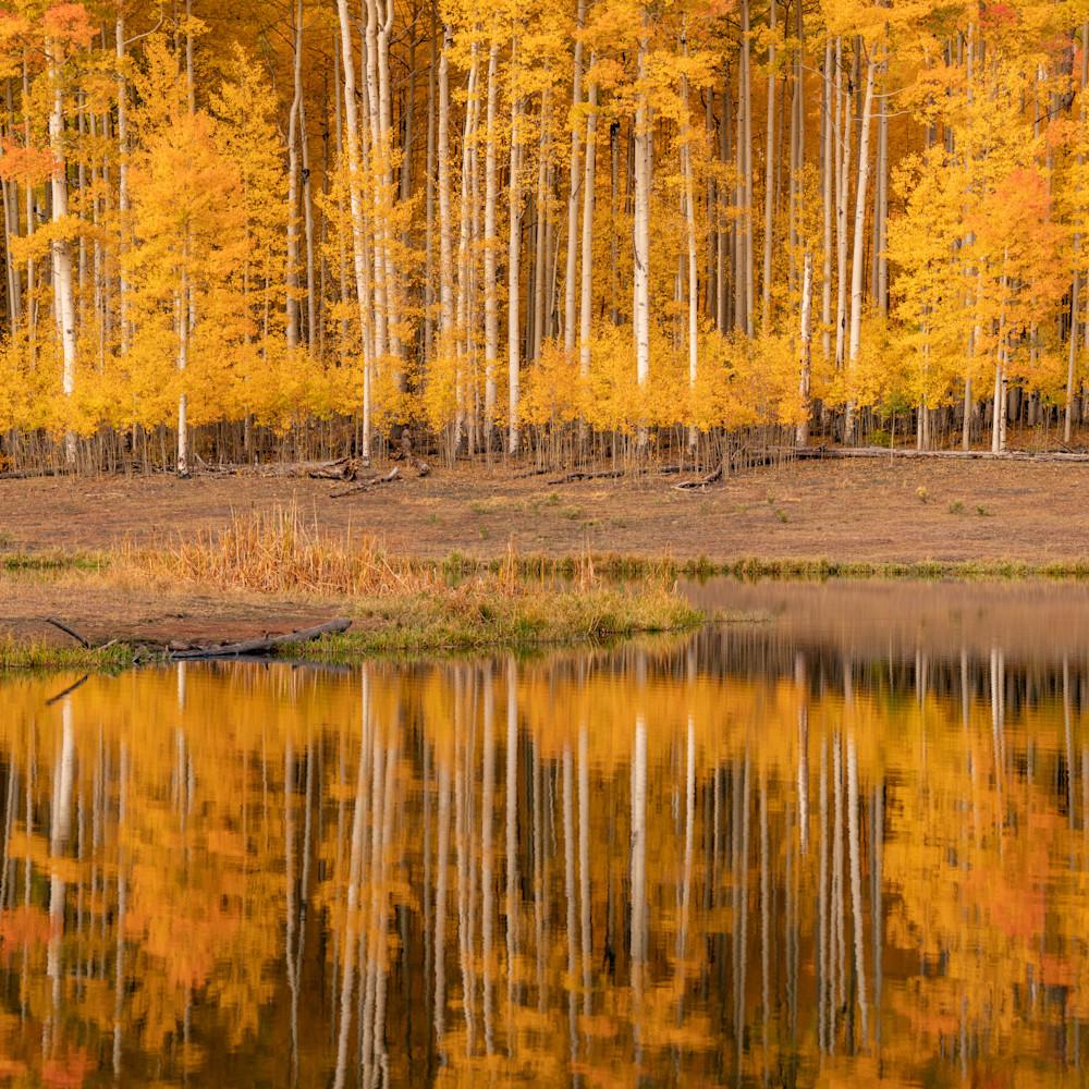 Aspen reflection 2x3 vert print srgb udppnr