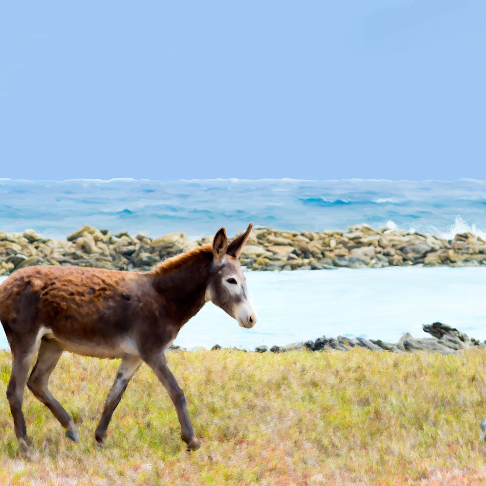 Donkeyprintshowfinal ted95l