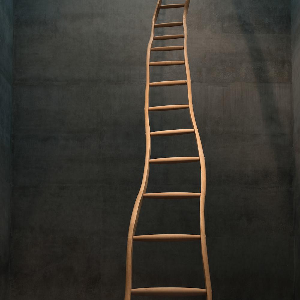 Ladder2 hxdlp5
