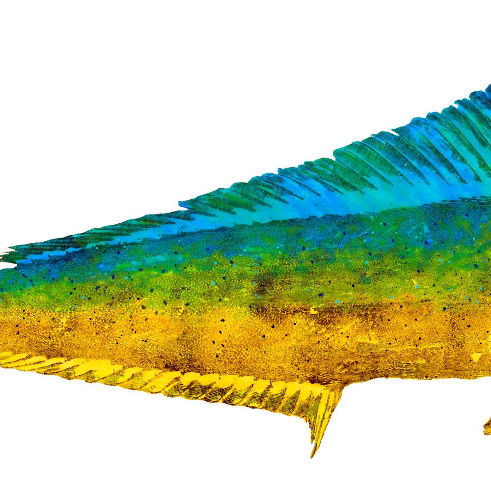 Female mahi 38x15 asf faazc7