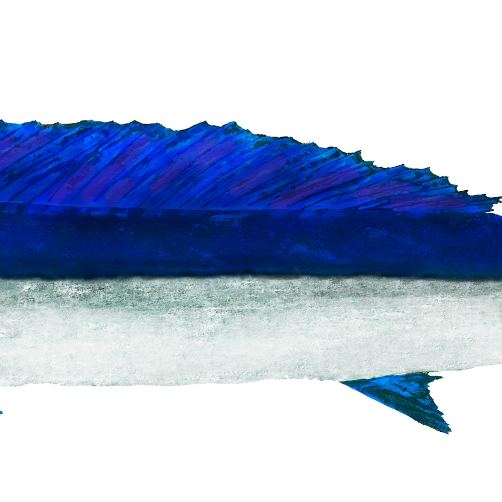 Spearfish asf xiq7be