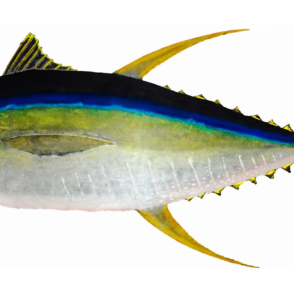 Yellowfin asf ldh0ou