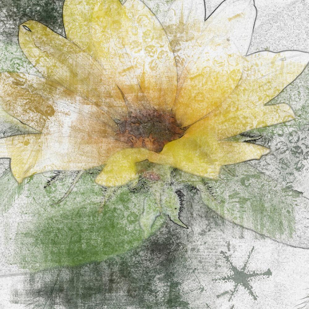 Sunflower water1size ocdonx