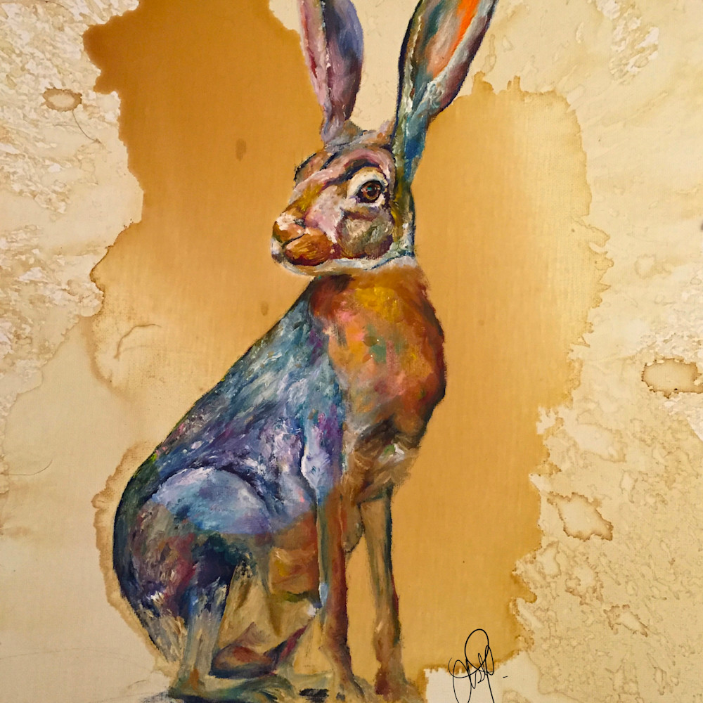 Rabbit dif5va