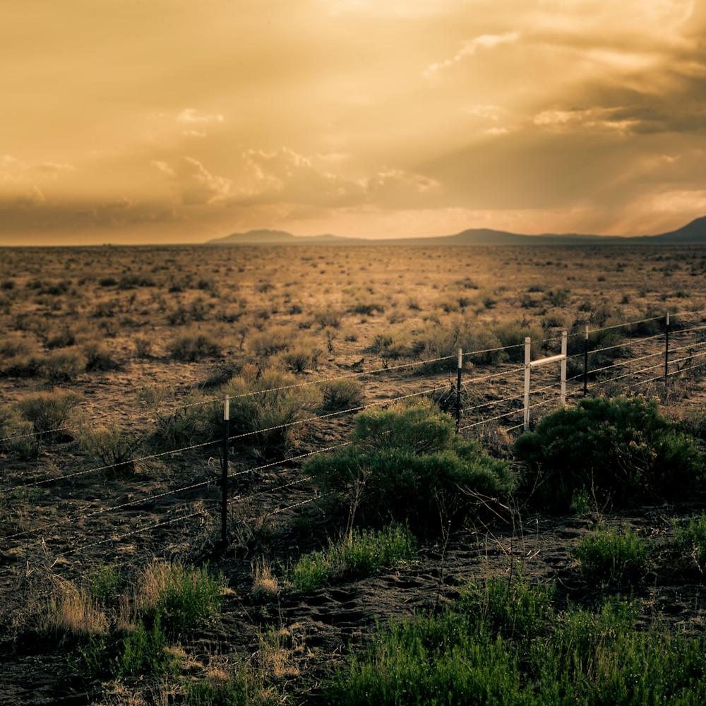 Fence line uw8d8u