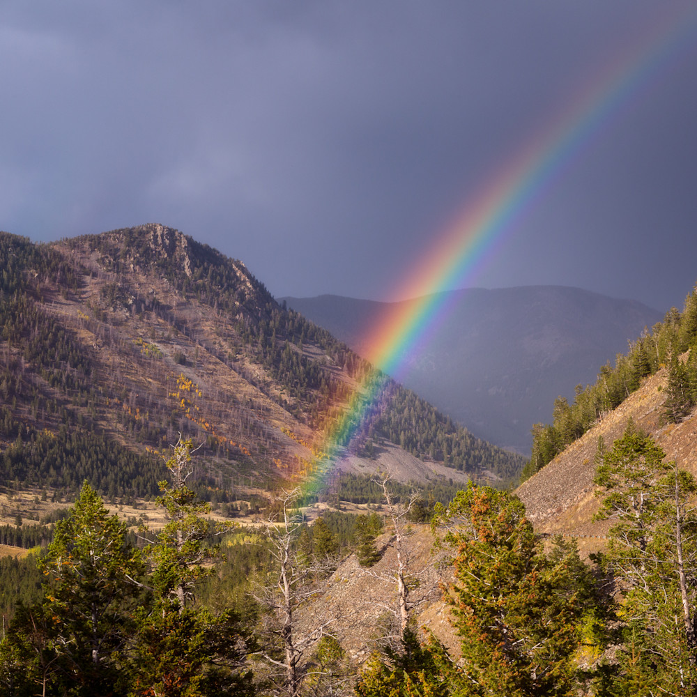 Red lodge rainbow mldzgy