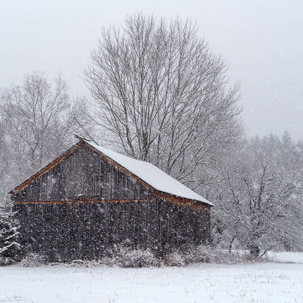 Winter barn zhzdka