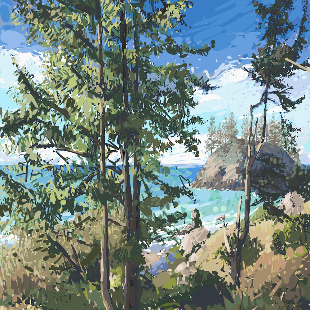 Island through trees 2 by andrew daniel swobt6