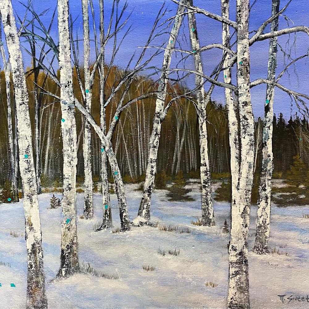 Print   winter forest mlqbwl