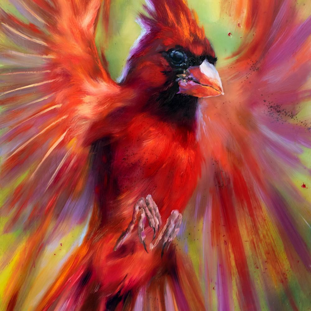 Cardinal new ztoqem