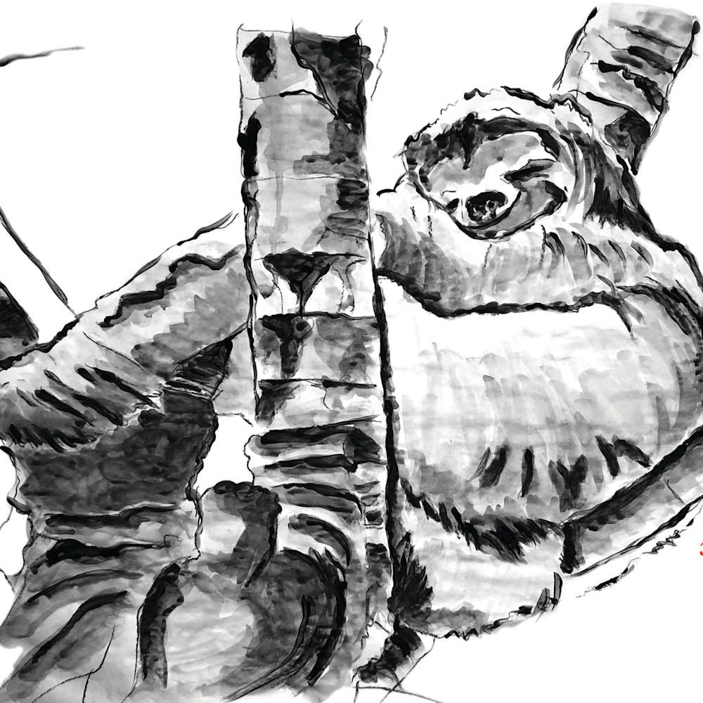 Master file color sloths2 horizontal copy yfhjif