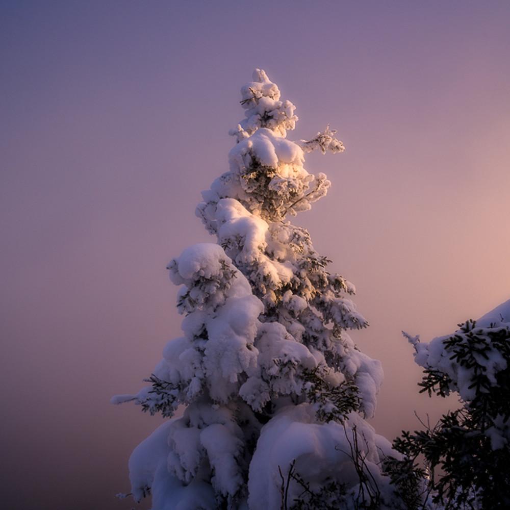 Snowghost qljnsh
