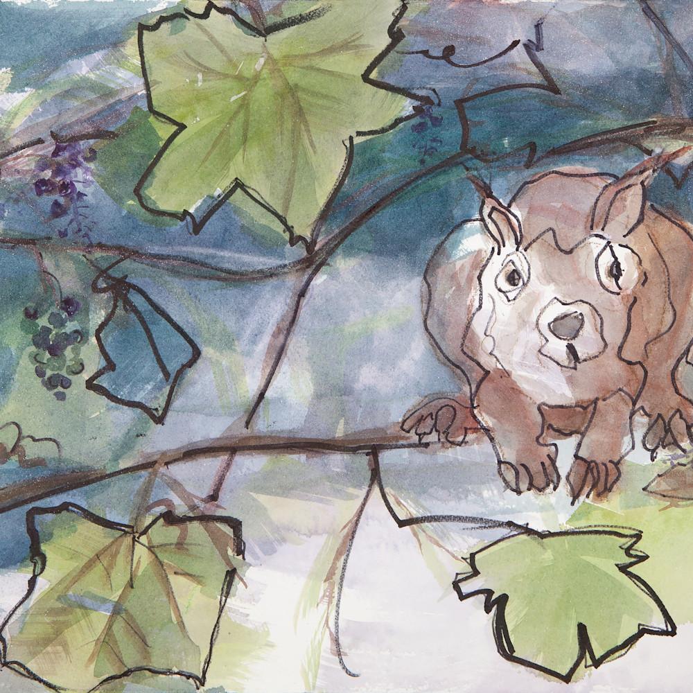 Squirrel ffldiz