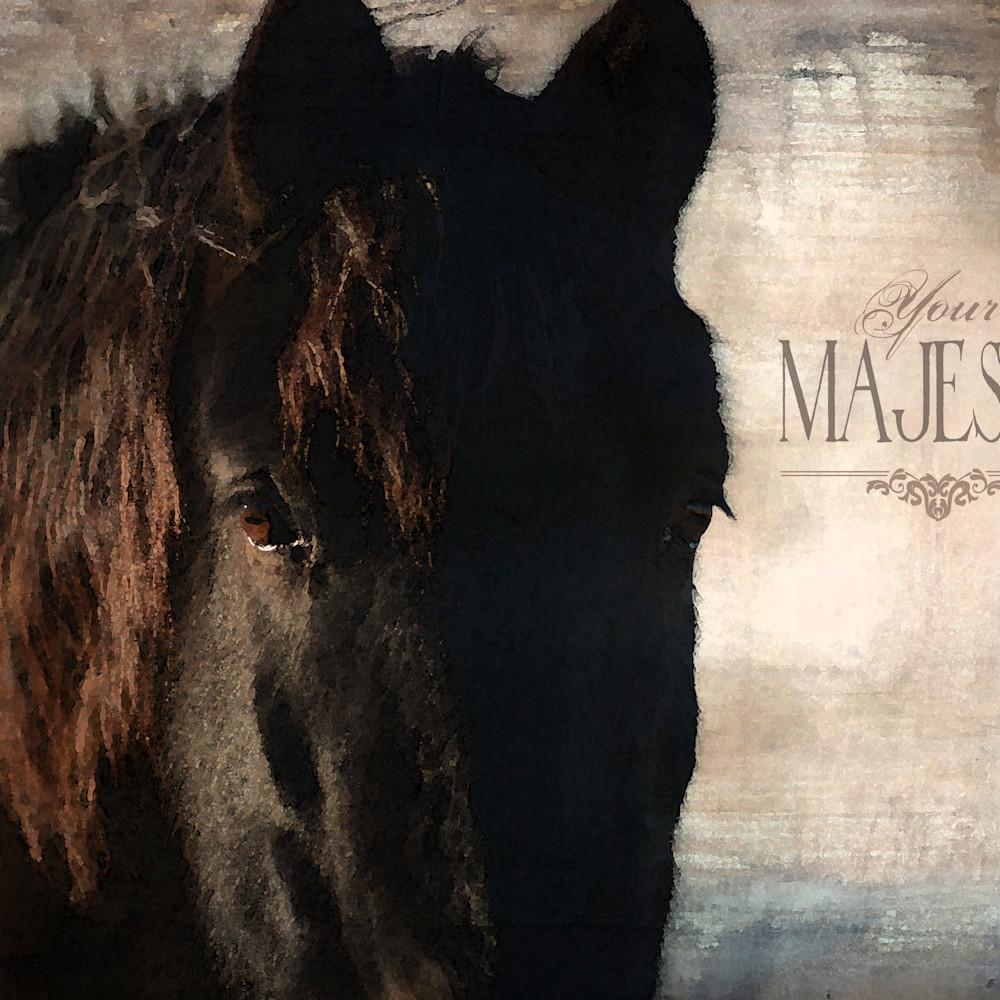 Horse black majesty cypfdg