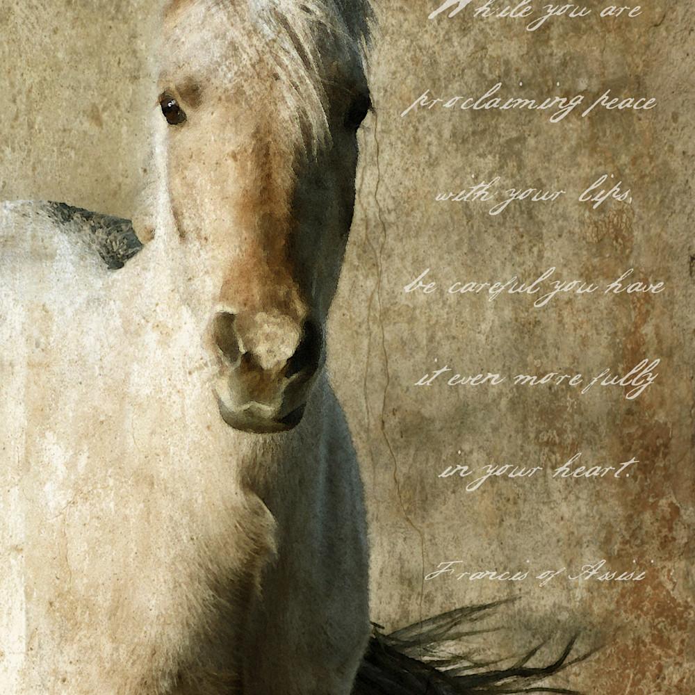 Horse new v while uhhd57