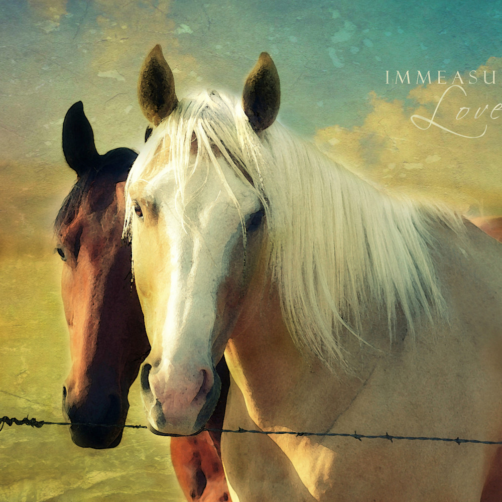 Horses 2 v wdkchi