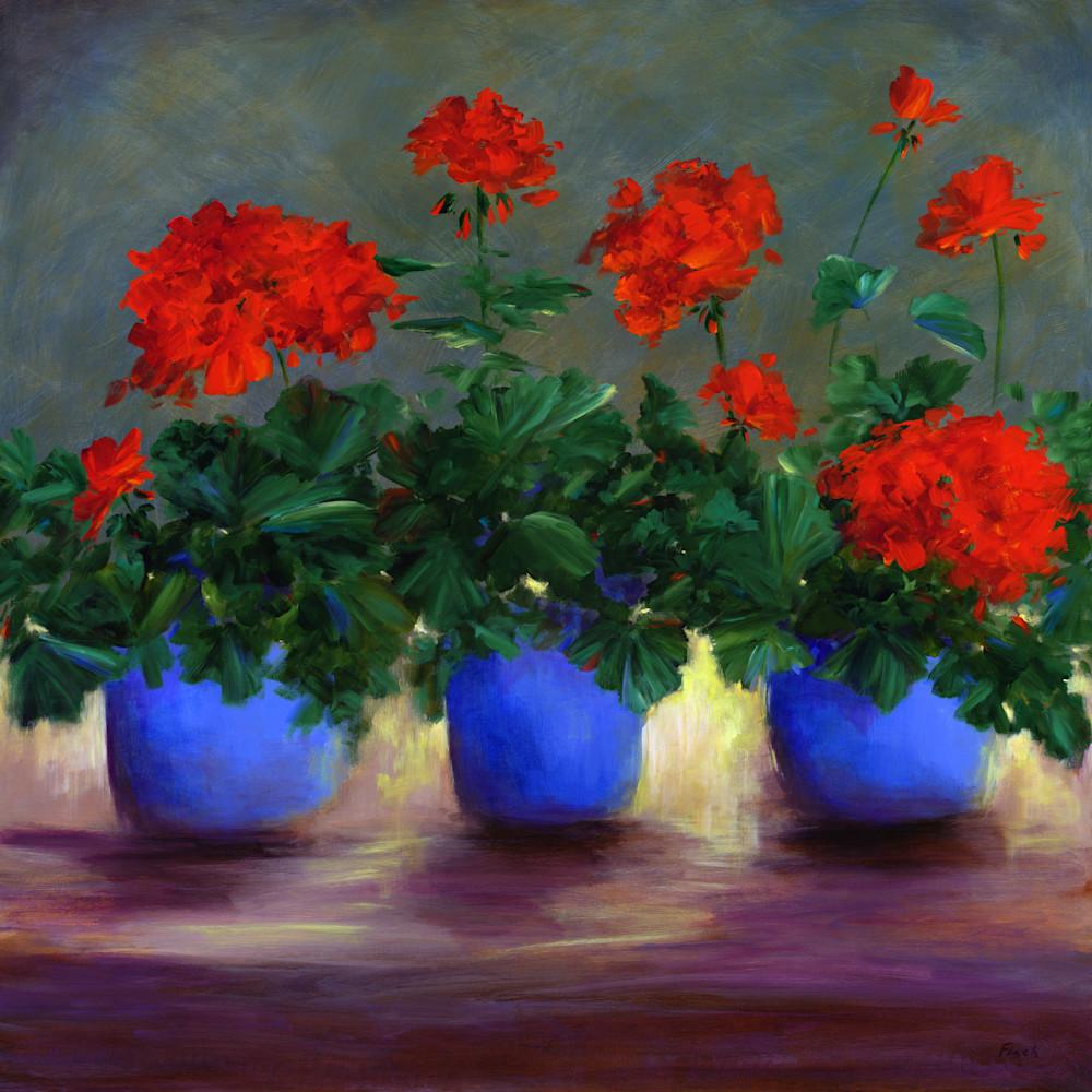 Asf red geraniums 2003 15 ji0nej