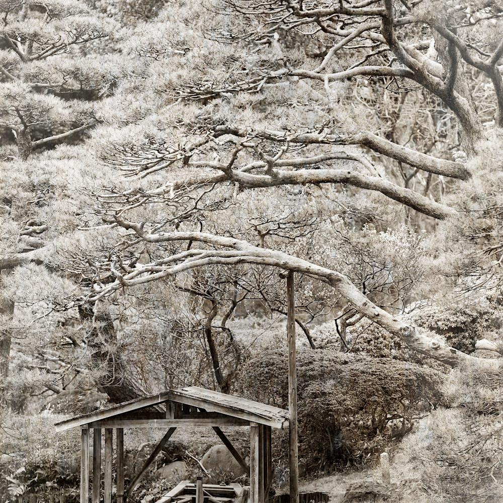 Jimgrahamphotography2017 japan 30x40 d5a4955 web eb8k06