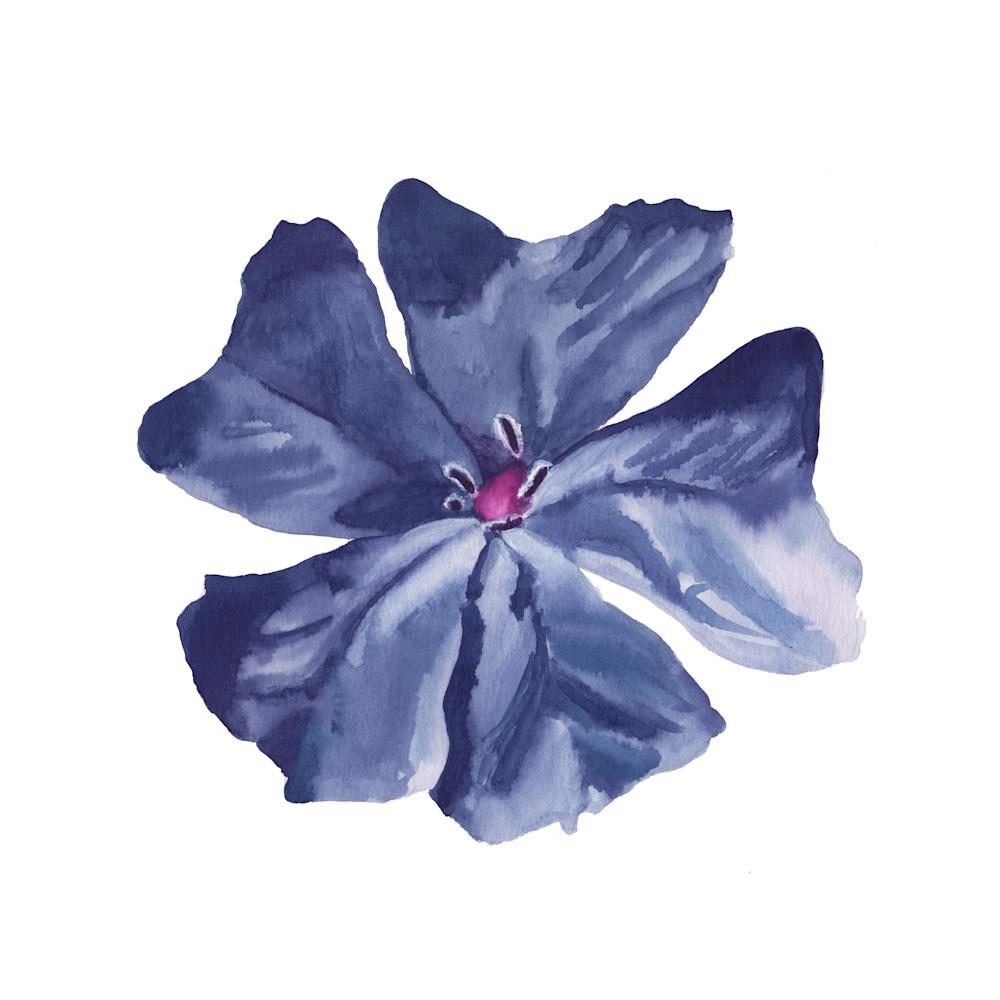 Blue 10x10 u0m7hg