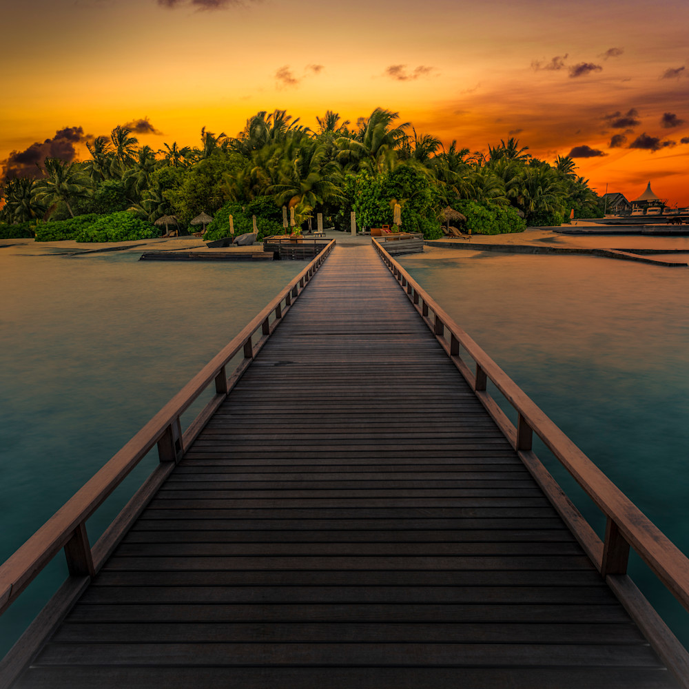 Path to paradise wwq2fo