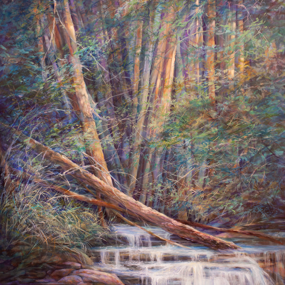 19f20 woods lovely dark and deep 18x24 oil lindy c severns edit 2021 2g ezwqwi