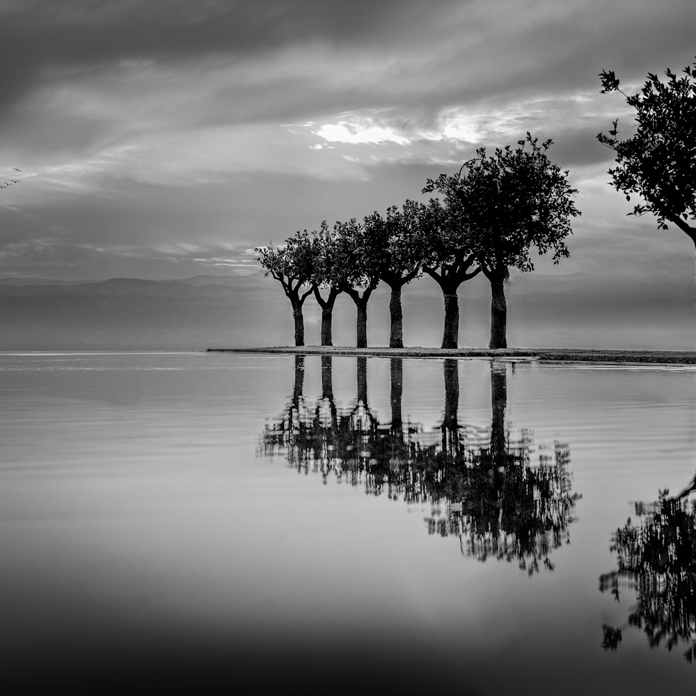 Reflections of time mb5rjn