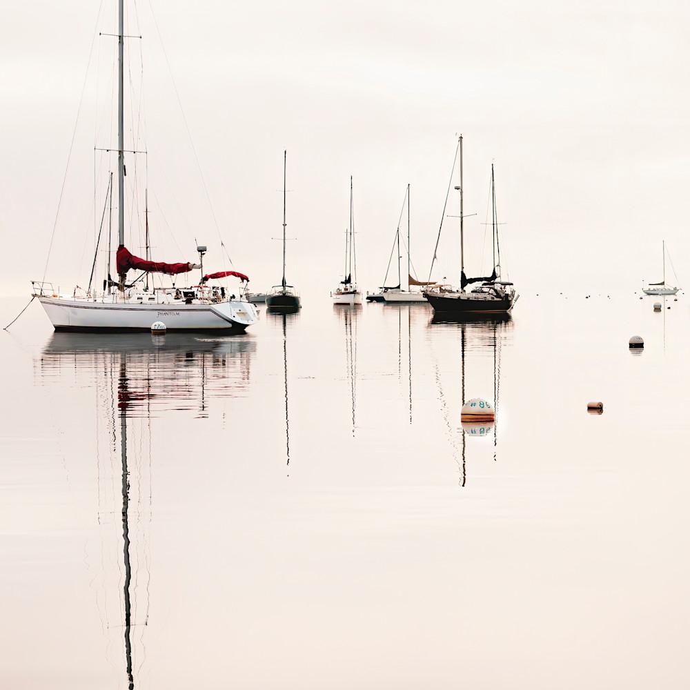 Felice willat   belfast harbor mgmatn