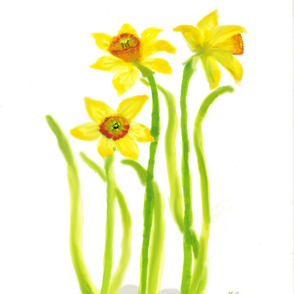 Daffodils painting xvwffb