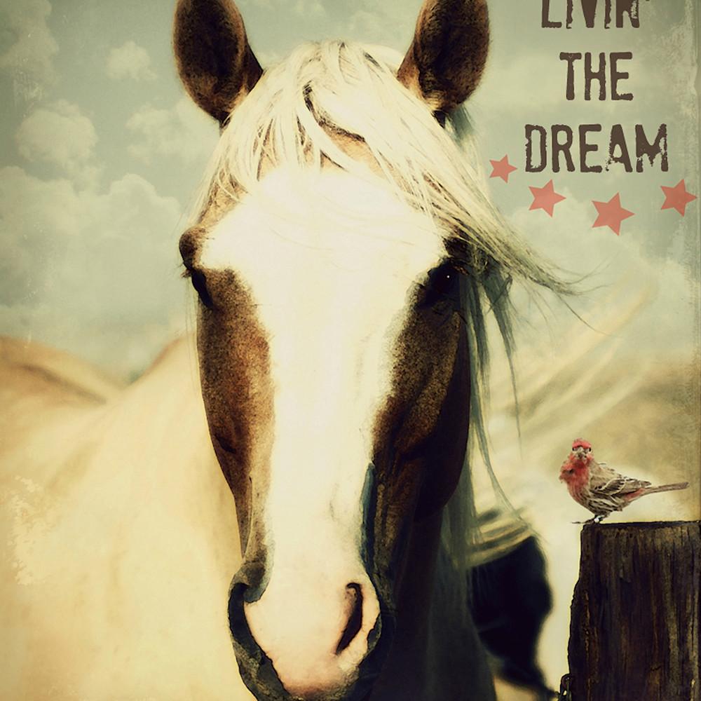 Horse and bird dream v s f8qbgm
