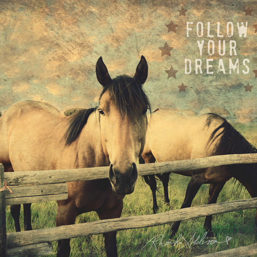Horses fence vs x9axrz