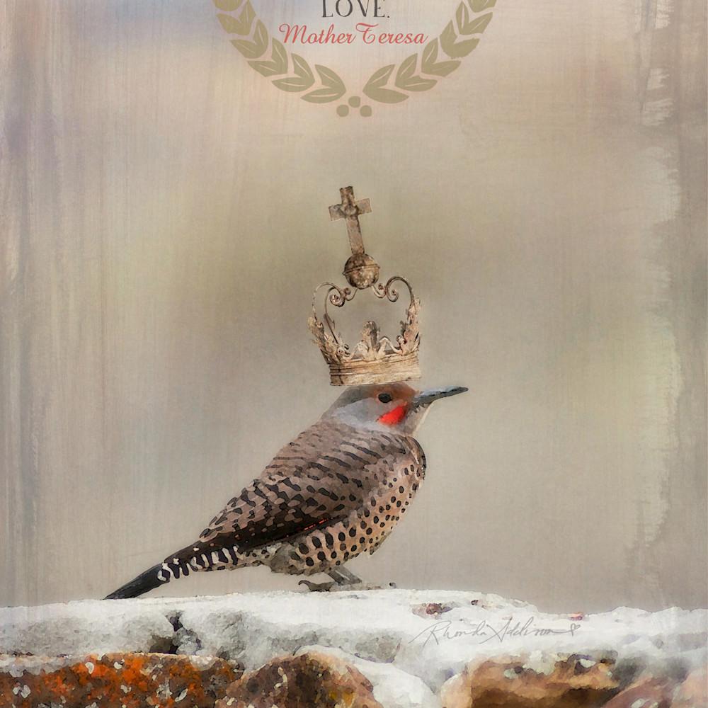 Bird wp teresa tall v s f4btqe