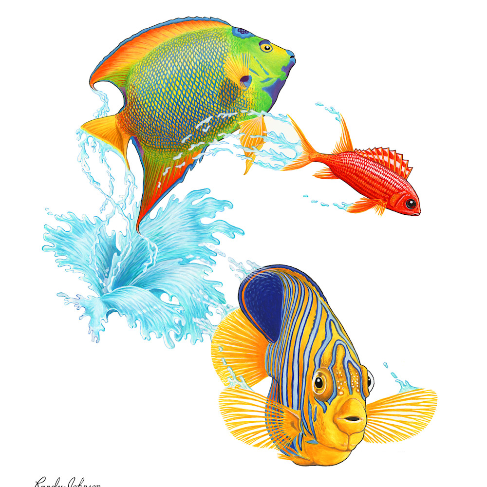 P7 jumping reef fish en2d70