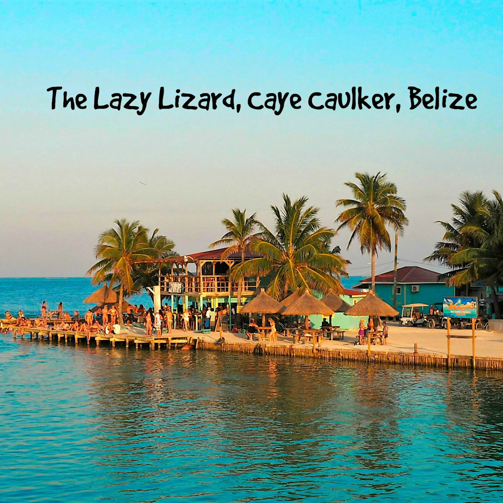 Lazy lizard caye caulker by aellis kycpnj