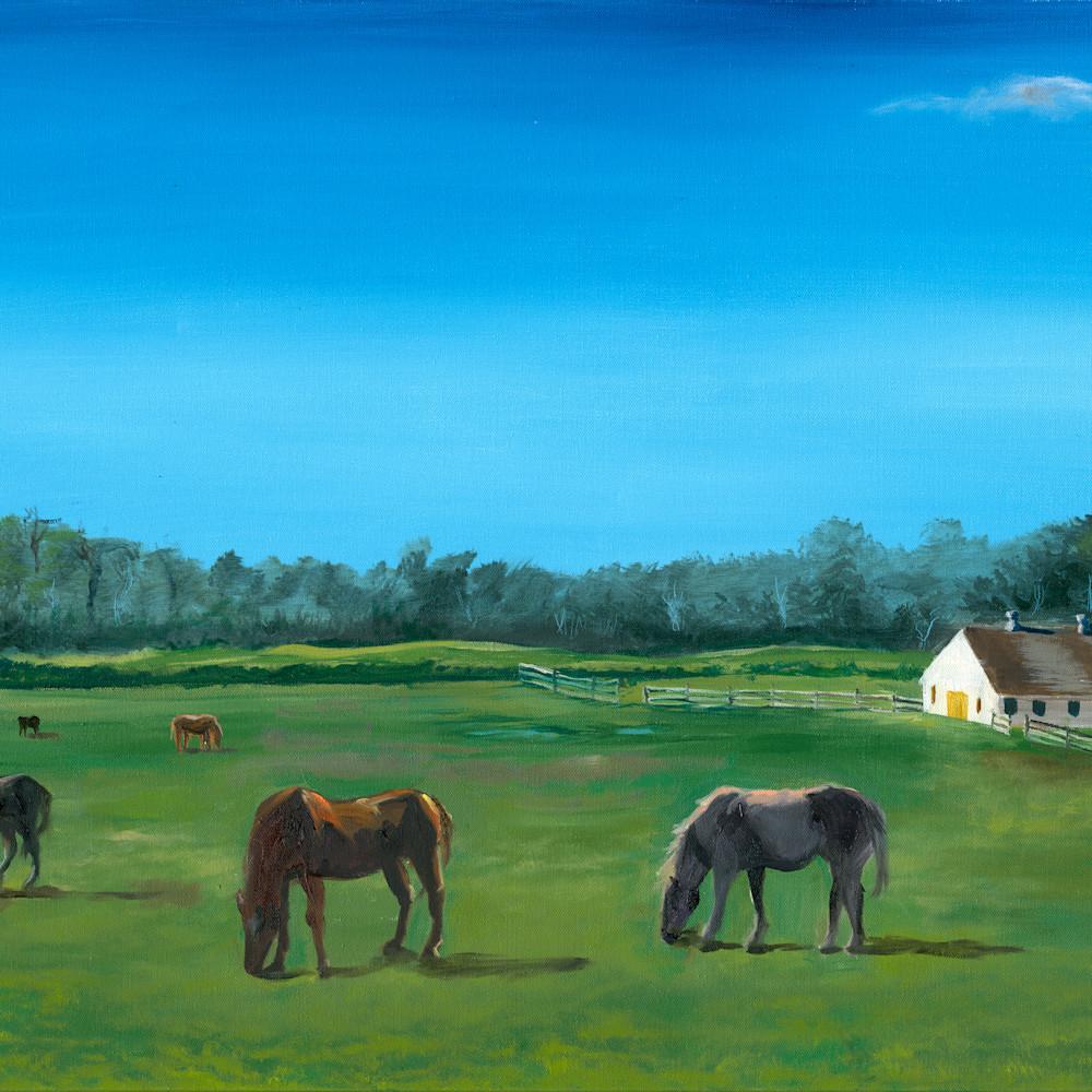 Cedar road horse farm color adjusted hlff6q