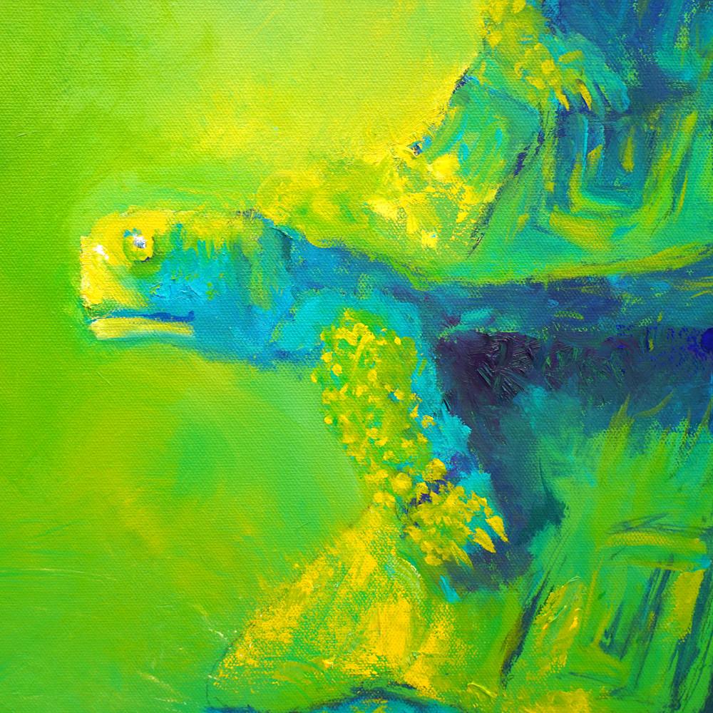 Turtles green detail 1 c6ctht