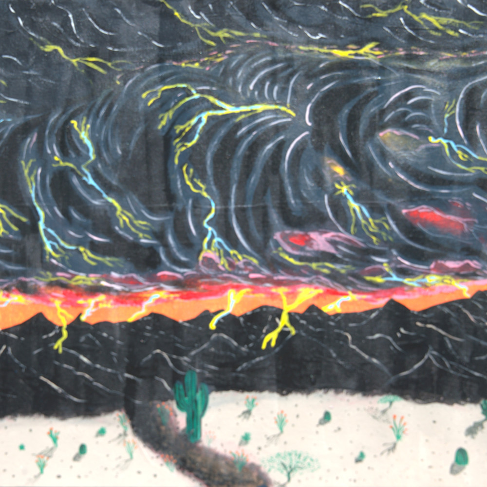 Skunk in monsoon 1 mzs1uz