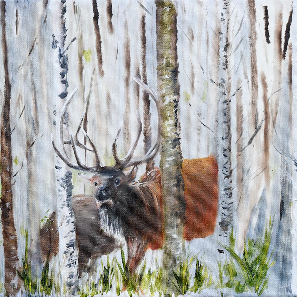 Elk in the birch edit full hm3kcp