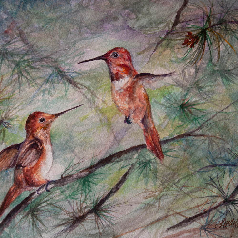17j18 comparing wing spans 8x10 watercolor lindy c severns edit 2021 2g h2xjjx